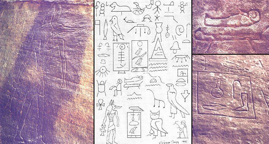 Geroglifici (oltre 250) scoperti nel National Park forest of the Hunter Valley
