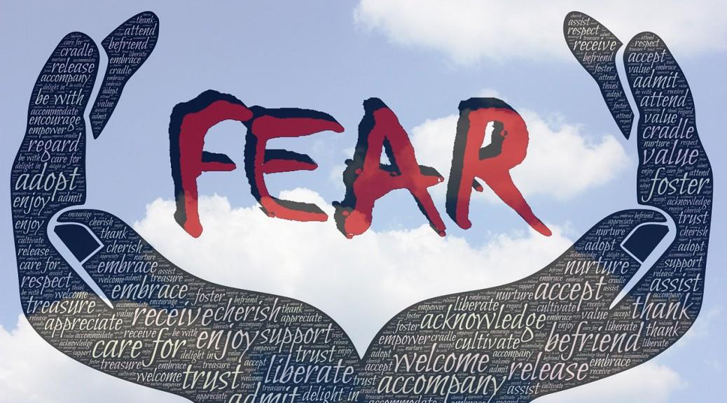 fear-772516_1280