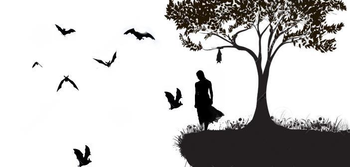 uccello-dell-albero-62388419-702x336